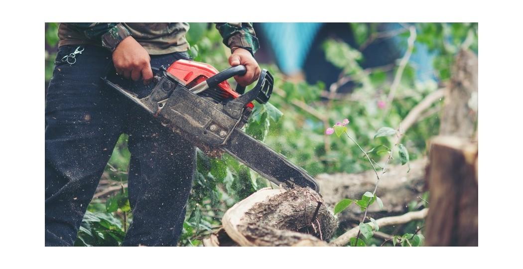 11 ابزار کاربردی برای برش چوب